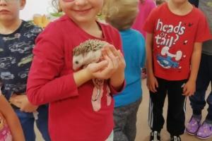 30. 09. 2019 - Navštívil nás ježek Rozárka